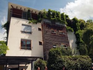 屋上緑化が義務の平屋根